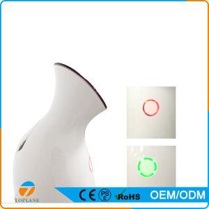 Hot & Cold Nano Mist Facial Steamer Portable Facial Sprayer pictures & photos