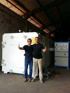 Dx-12.0III-Dx Lumber Vacuum Drying Machine for Wood Industry pictures & photos