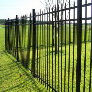 Wrought Iron Fence for Residential Garden Fence