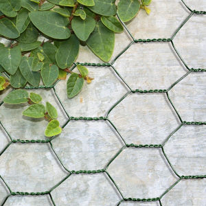 Hot Sales Green PVC Coated Poultry Netting pictures & photos