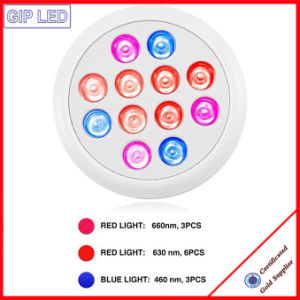 Europe Best-Seller Crees Bridgelux Epistar 12W LED Grow Light pictures & photos