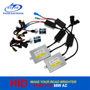 Hot Sell 55W Canbus HID Xenon Headlight Kit with A8s Canbus Ballast pictures & photos