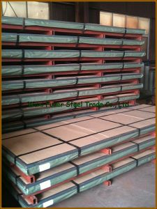 Duplex Steel 2205 Stainless Steel Sheet/Plate pictures & photos
