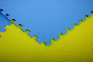 EVA Foam Mat in Martial Arts pictures & photos