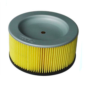 Robin Subaru 243-3260-08 243326008 Air Filter pictures & photos