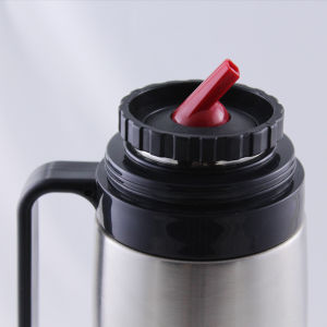 Stainless Steel Mate Flask /1.0L Vacuum Flask with Tubo Yerba Mate Thermo (FSAS) pictures & photos