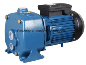 Ce Cerificated High Pressure Self-Priming Jet Water Pump pictures & photos