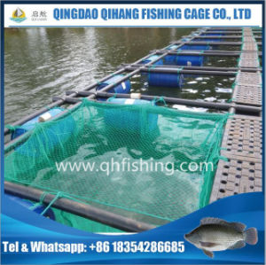 Seabass Fish Farming Cage with Nylon Double Net pictures & photos
