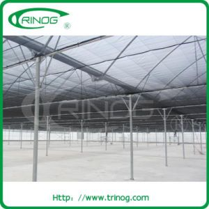Galvanized steel frame greenhouse with cooling pad with fan pictures & photos
