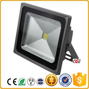 Hot Sell Outdoor Lighting IP65 100W 120W LED Flood Light for Football Field Waterproof, High Lumens, Reliable Quality, Park Landscape Lightinghotel Lighting, pictures & photos