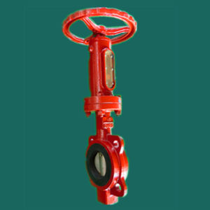 Marine Accessories Carbon Steel Butterfly Valve pictures & photos