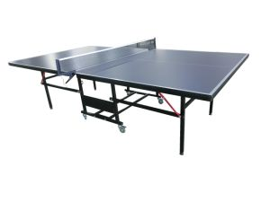 Professional Table Tennis Table pictures & photos