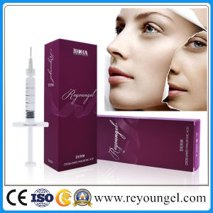 Reyoungel Facial Deep Wrinkles Remove Dermal Filler for Anti-Wrinkle pictures & photos