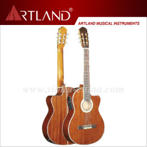 Sapele Top Back&Side Classic Guitar (CG309CEQ) pictures & photos