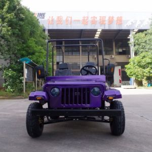 China Red Mini Go Kart/Jeep with EPA Certification (JYATV-020) pictures & photos