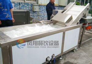 Automatic Multi-Function Air Bubble Fruit Vegetable Washer Washing Machine with Ce Certificated pictures & photos