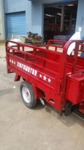 200cc Cargo Tricycle Motorcycle for African Market pictures & photos