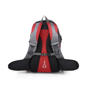 Fashion Mixed Color Chubont Waterproof Laptop School Bag Sports Backpack pictures & photos