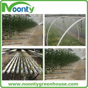 Watering Plastic Greenhouse Irrigation Micro Sprinkler pictures & photos