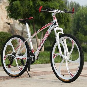 Aluminum Alloy Disc Brake Mountain Bicycle pictures & photos