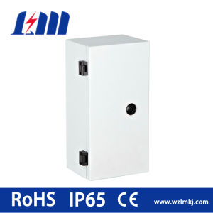 Cold Rolling Steel Metal Box with Two Metal Locks