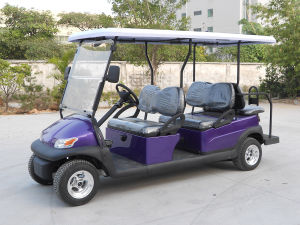 Cheap 6 Seat Electric Tourist Car/Cart From China pictures & photos