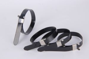 PVC Coated Ball Lock Stainless Steel Cable Tie pictures & photos