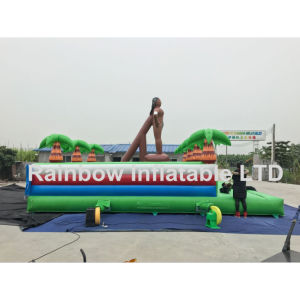 Crazy Inflatable Race Game/Inflatable Funny Race Track for Outdoor pictures & photos
