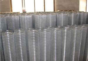 High Quality Big Discount Mesh for Sale pictures & photos