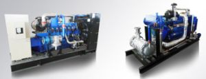 AVR Brushless 10kw Wood Gas Generator pictures & photos