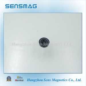 Magnetic Assembly NdFeB Magnet with Epoxy Coated pictures & photos