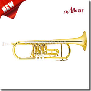 Bb Key 3 Rotary Valves Yellow Brass Trumpet (TP8807G) pictures & photos