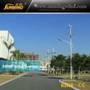 Wind Solar LED Road Lighting (100W LED Light)