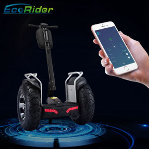 Ecorider Smart Two Wheels Balance Self Balancing Electric Scooter Chariot pictures & photos