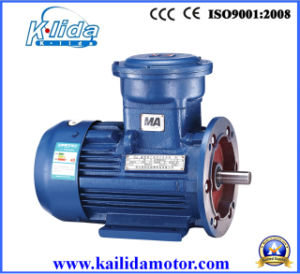 Yb2 Explosion Proof Electrical Motor with CE pictures & photos