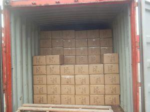 HPL Logistics Service From China to Asuncion Paraguay pictures & photos