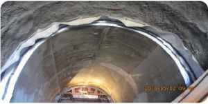 ASTM PVC Geomembrane for Underground Works pictures & photos