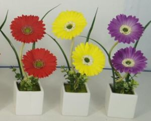 Promotional Gift for LED Artificial Flowers with Ceramics Pot pictures & photos