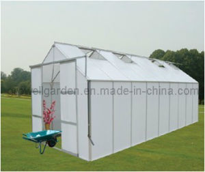 11′ Wide Growell Walk-in Greenhouses (HB11H series, 11ft *7-14ft, 9ft height) pictures & photos
