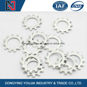 Chinese High Quality Ss304/316 Stainless Steel Toothed Lock Washer pictures & photos