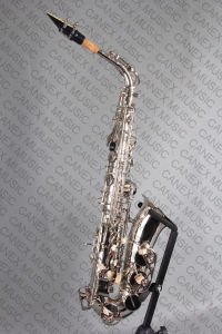 Alto Saxophone / Saxophone Nickel (SAA-N) pictures & photos