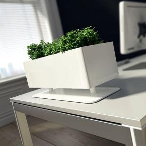 Uispair 100% Steel Office Garden Hotel Decoration Square Desktop Flowerpot