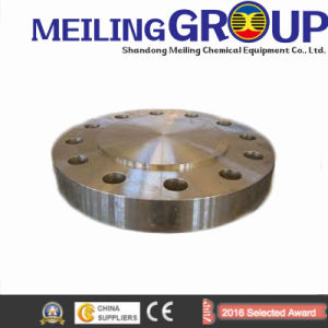 Steel Made Customized Flange pictures & photos