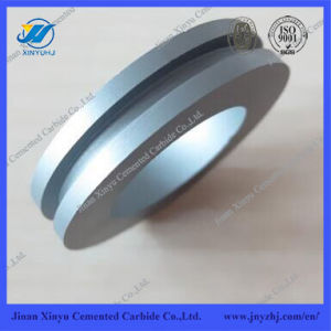 Tungsten Carbide Round Gasket with Tiny Hole for Spray Tower pictures & photos