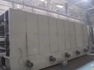 Dw Mesh Belt Dryer for Flesh Vegetable pictures & photos