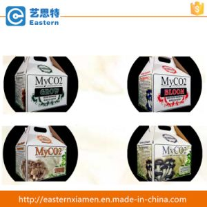 Custom Foldable Paper Mushroom Packaging Boxes with Handle pictures & photos