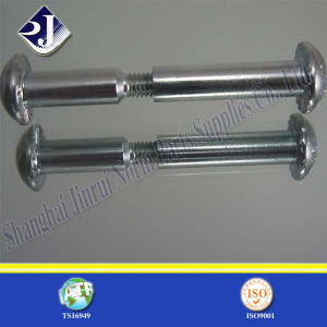 Chicago Screw (stainless steel 304) pictures & photos