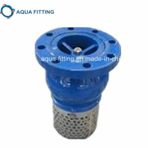 DIN Foot Valve Flanged End