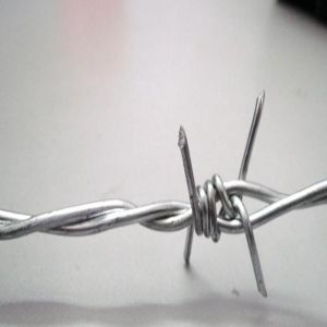 2.0mm Double Twist Electro Galvanized Barbed Wire pictures & photos
