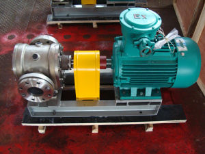 Ycb20 Stainless Steel Gearoil Pump pictures & photos